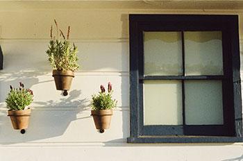 house-wash-window