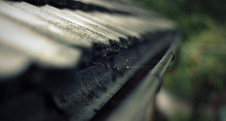 blocked gutter by rain